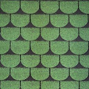 Biberschwanz Grün